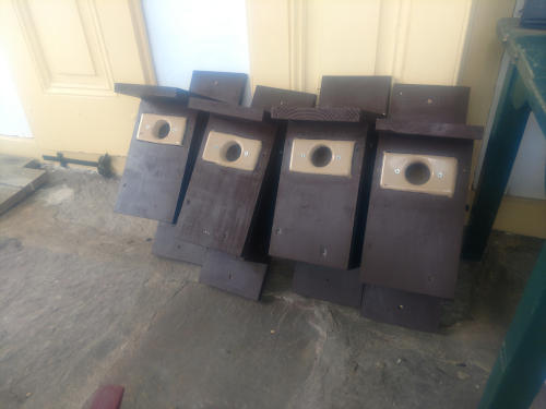 photo of 4 birdhouse
