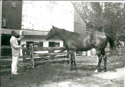 photo Welsh Strawbridge to the left holding rein to thoroughbred Riverbreeze to right.  Both standing in front of gable end of barn showing forebays to the right and left